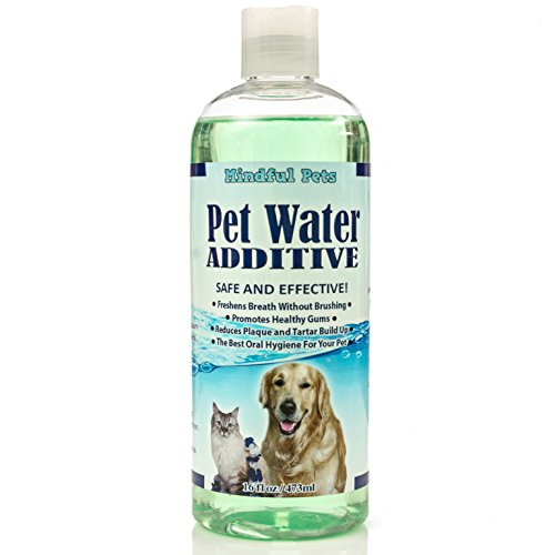 Best Anti Plaque Water Additive For Dogs